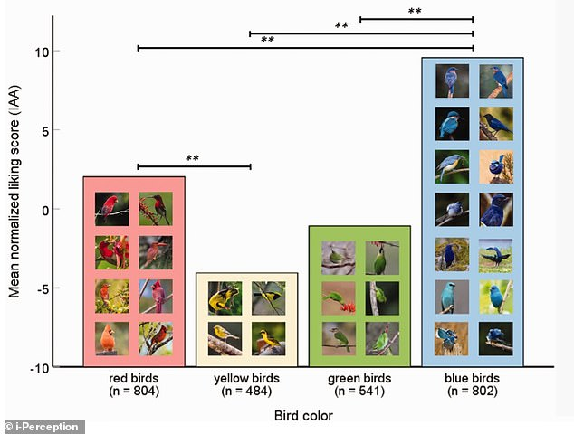 Blue birds had the highest score, followed by red birds, green birds and yellow birds. Yellow birds maymn objects such as rotten food are often yellowmay be