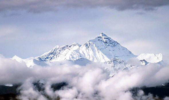 Fossils were found at the top of Mount Everest