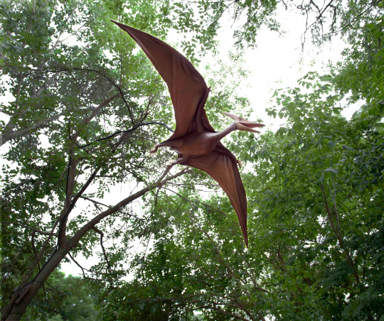 Pterosaurs that screech as they soar through the trees