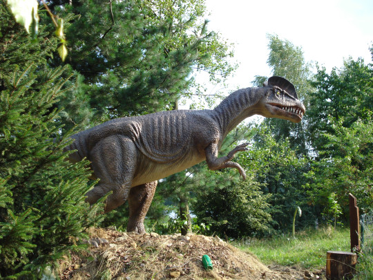 The 8m tall T-Rex that breathes and sways its tail