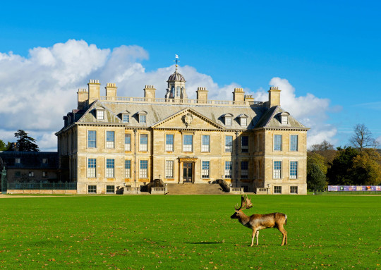 F68XRE Deer grazing in front of Belton House, near Grantham, Lincolnshire, England UK