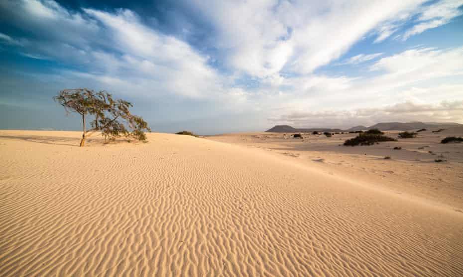 Corralejo national park, Fuerteventura, Spain.