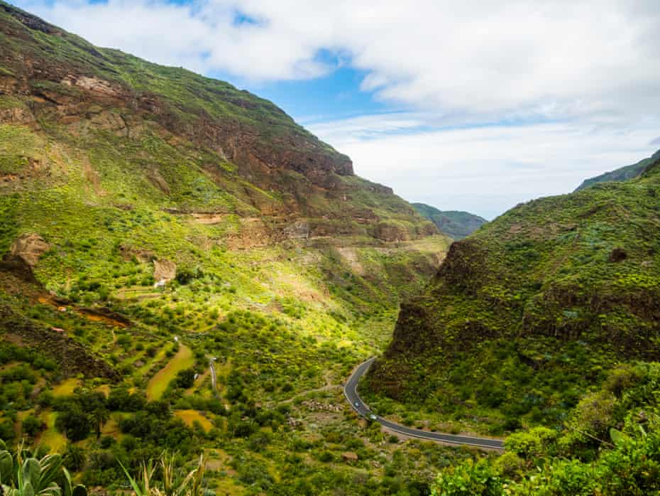 Spain, Canary Islands, Gran Canaria, Barranco de Guayadeque