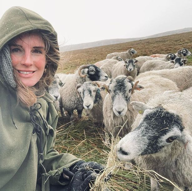 Amanda is responsible for looking after 1000 sheep on the farm