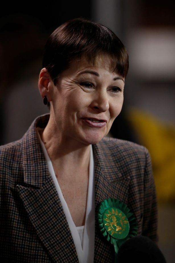 Caroline Lucas, vice-chairwoman of the All-Party Parliamentary Group on coronavirus, urged action
