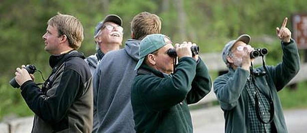 Bird Watching (Pic:Getty)
