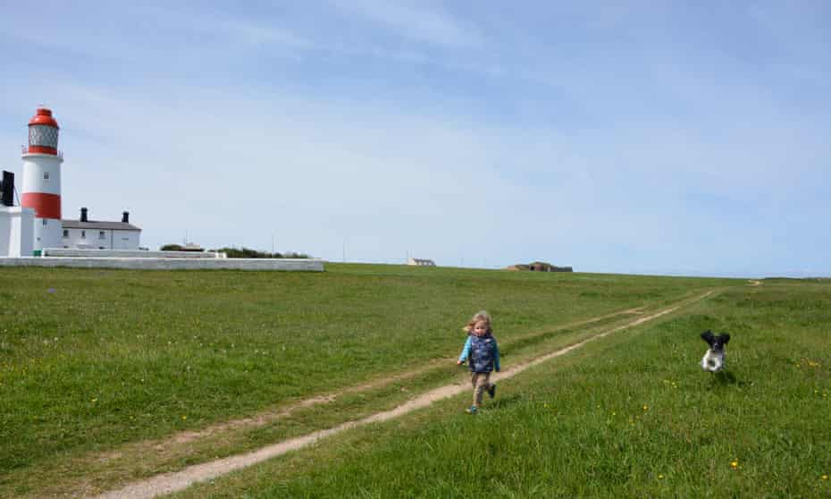Small child and a dog run in a field past Souter Lighthouse, South Shields, UK.