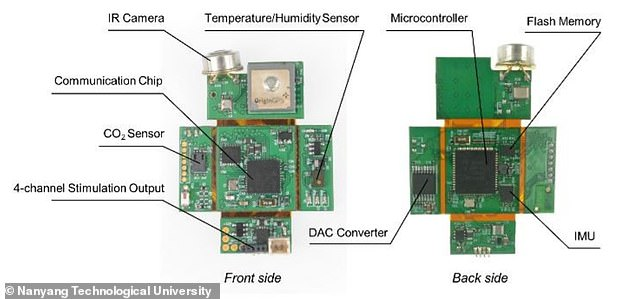 The computer chip backpacks include an infrared camera, carbon dioxide sensor and a temperature/humidity sensor, among other functions