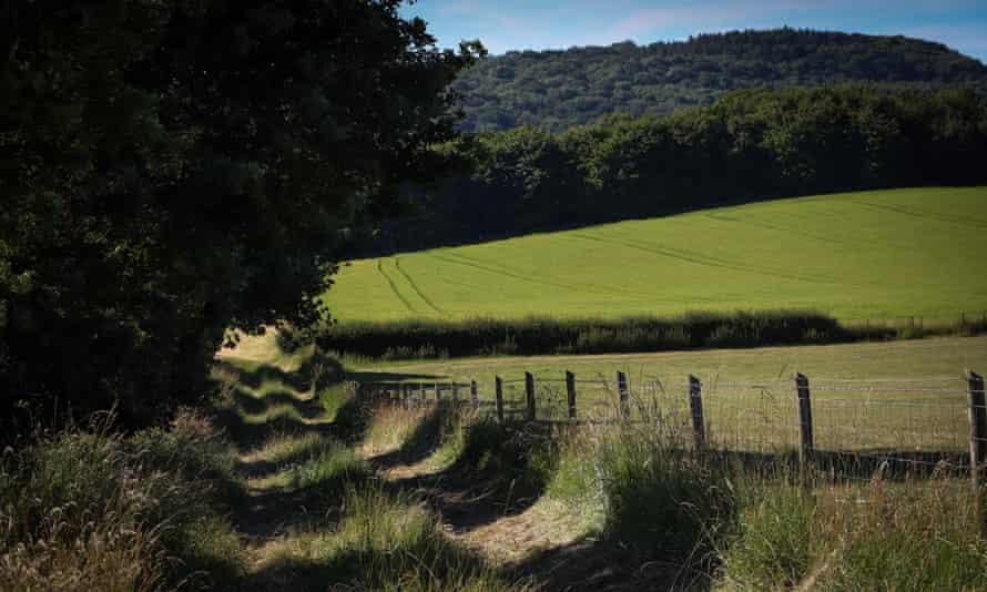 A peaceful footpath near Dymock.