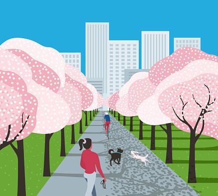 illustration of a city park