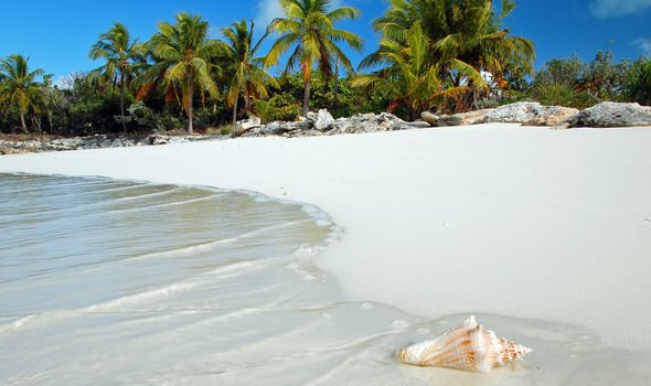 Green list update: Jamaica beach