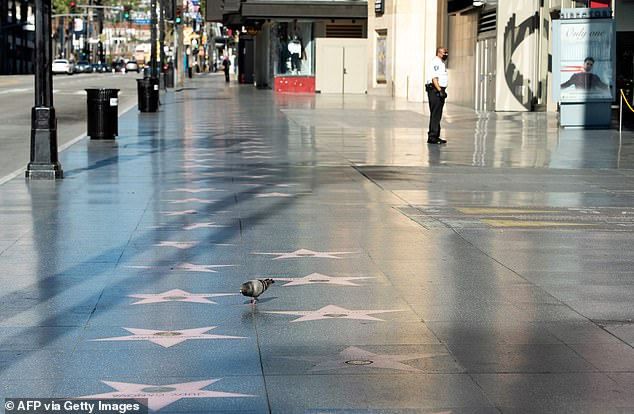 Process: Stars were selected by the panel for the Hollywood Chamber of Commerce's Walk of Fame