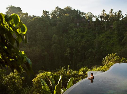 Woman in infinity pool at sunrise. Bali.