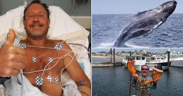Lobster diver Michael Packard was swallowed by a humpback whale in Cape Cod, US, and spat back out
