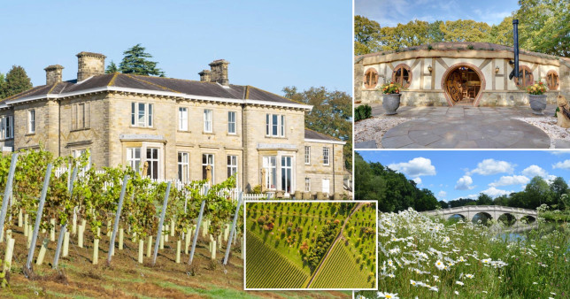 The UK's quirkiest vineyards from a helter-skelter wine room to haunted vines