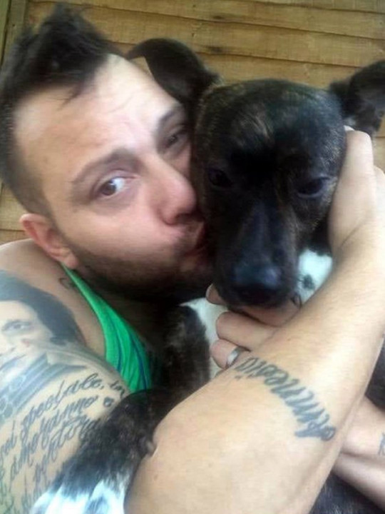 Walter Bocchetti has launched court proceedings to get his Staffordshire bull terrier Nennella back.