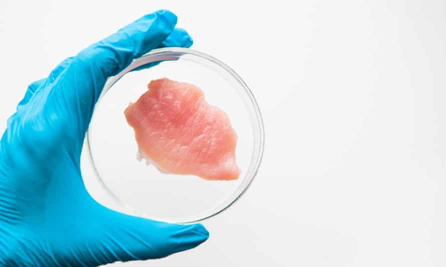 cellular meat