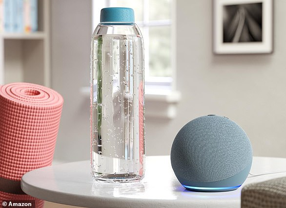 Amazon Echo has switched from its original hockey puck shape to a more fetching orb shape. Pictured,Echo Dot (4th generation)