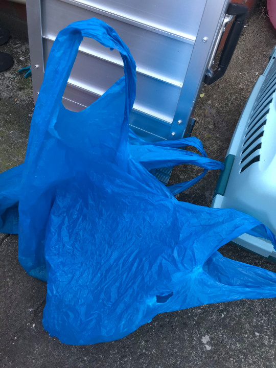 Two ducks found in bags and dumped in wheelie bin credit: RSPCA