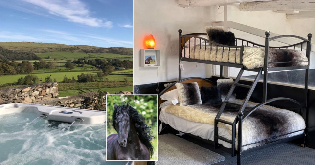 If you want a quirky staycation, you can stay in a stable for the night... with a horse
