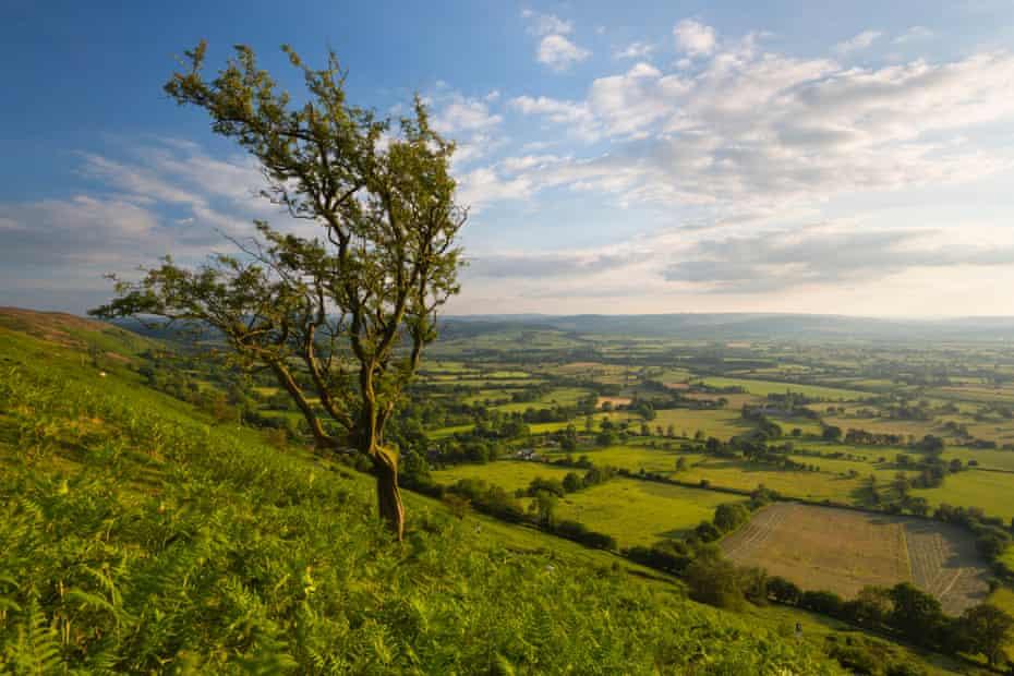 View from The Long Mynd, near Church Stretton, Shropshire, England, United Kingdom