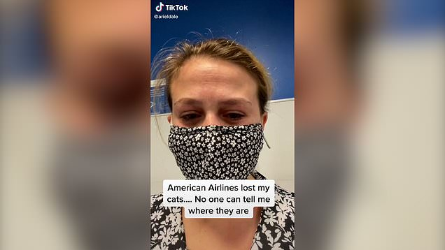 Airline loses woman's two cats