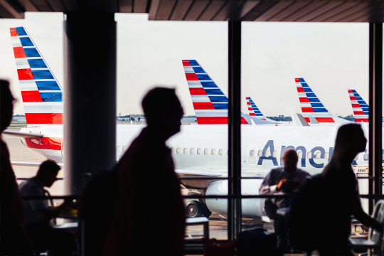 Ariel Dale said she received a message from American Airlines saying her original flight where her cats were supposed to be on was delayed and then canceled