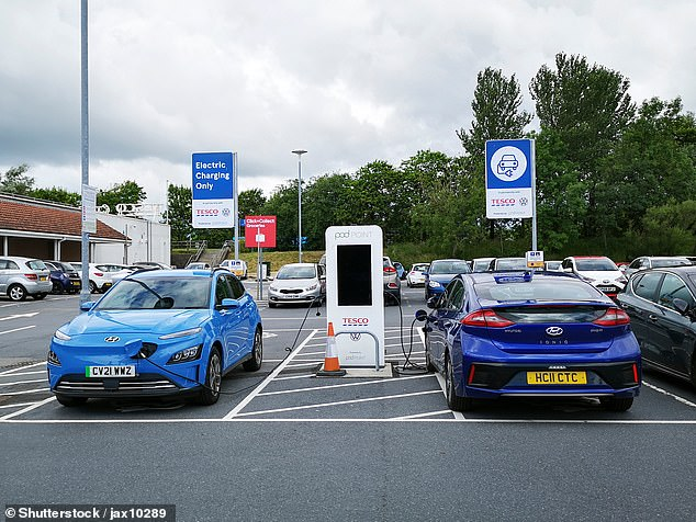 Some 90% of electric car owners said they have no intention of going back to a petrol or diesel model in the future