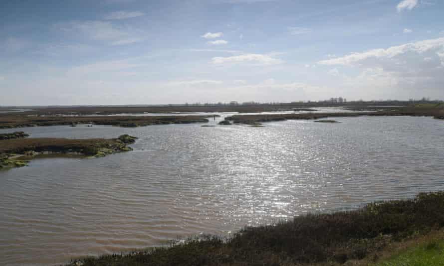 Hamford Water on the Essex coast.
