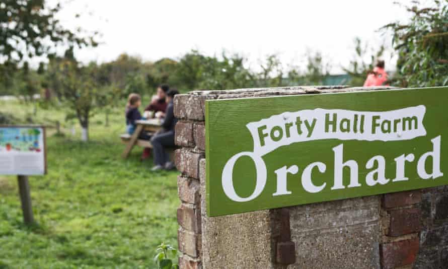 Forty Hall Farm