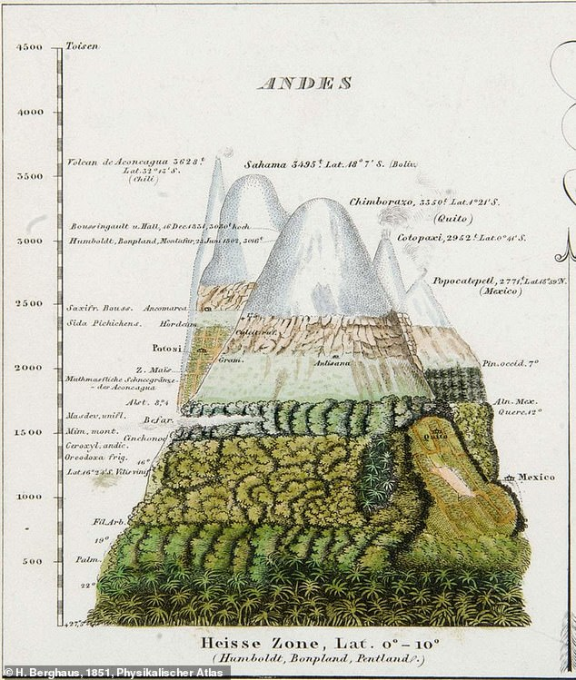 Pictured, a map from Victorian naturalist Alexander von Humboldt that shows how habitats change as you go higher in elevation