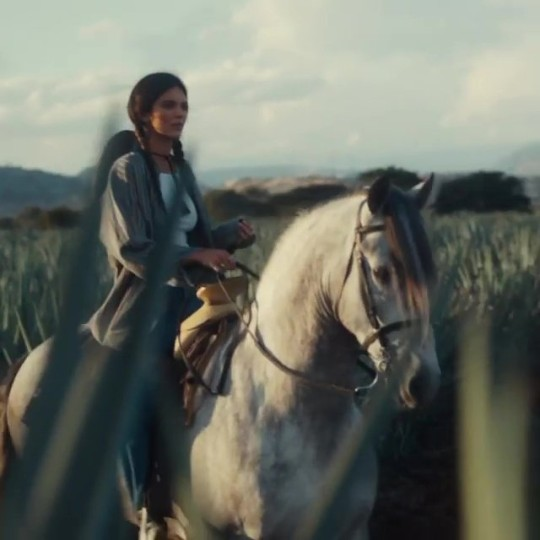 Kendall Jenner 818 Tequila launches in California