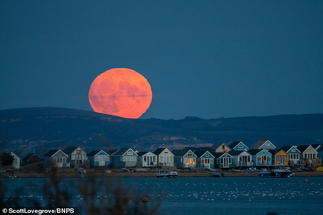 This year it is the fourth full moon of the season and is set to rise at 7:55 pm ET - it will also appear full for a total of three days. The stunning first full moon of September is seen rising over beach huts atHengistbury Head in Dorset in 2020