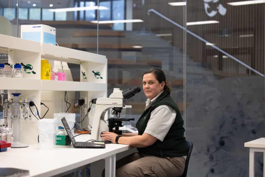 Jane Hall at the Australian Registry of Wildlife Health at Taronga zoo