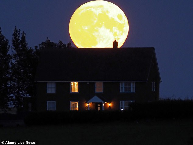 The Harvest Moon is set to light up the night sky on Monday, September 20, which will be the full moon closest to the autumnal equinox that falls on September 22 in the Northern Hemisphere. Pictured: Eastchuch in Kent on September 20, 2020