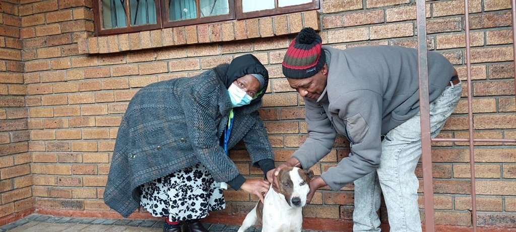 The Western Cape government said it will continue to vaccinate pets in the Khayelitsha area.