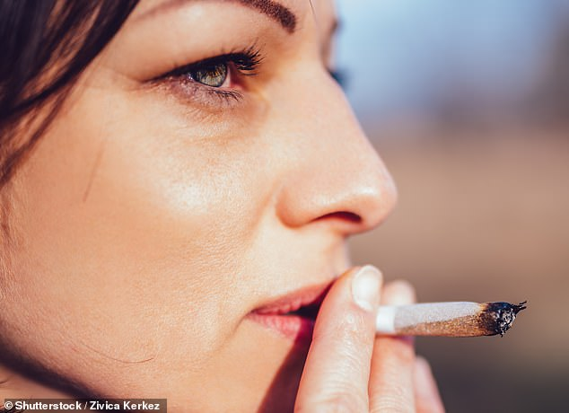 Smoking cannabis nearly doubles the risk of young adults suffering a heart attack, a study has suggested (stock)