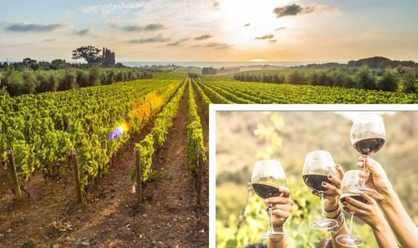 Book these top ten ranked UK vineyards and hotels