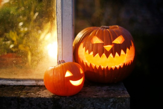 Still life of Halloween pumpkins