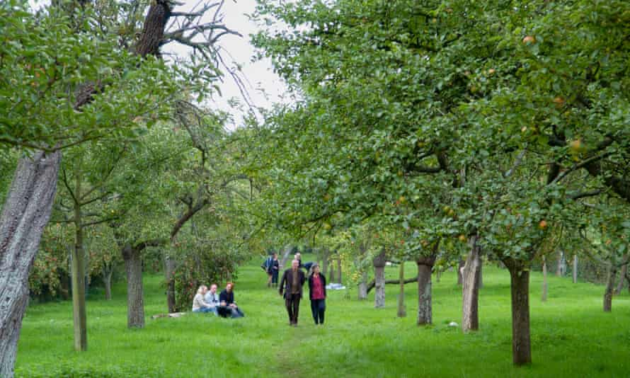 Visitors at Greggs Pit cider apple orchard on Big Apple Day at Much Marcle Herefordshire England