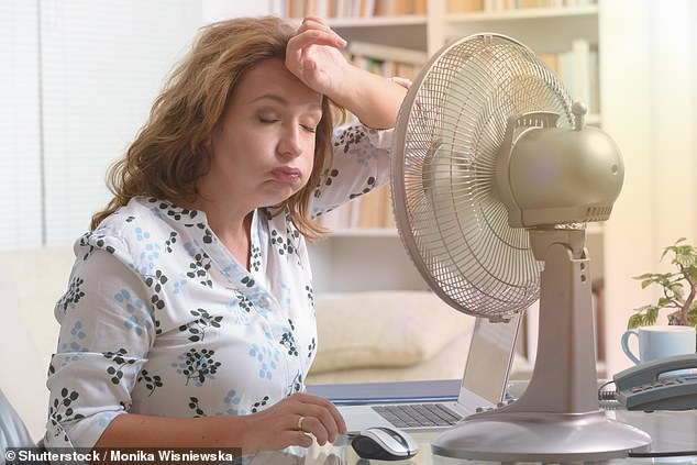Menopause, which can commonly symptoms such as hot flushes, usually hits women between 44 to 55-years-of-age in the UK. Now a new study suggests the length of the final periods before menopause could carry important clues to the future risk of heart disease the biggest killer of women in the UK (stock image)