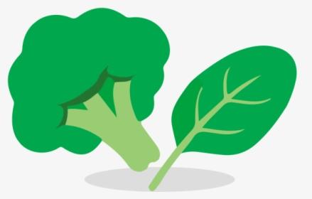 انواع سبزی ها