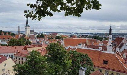 Att göra i Tallinn – 11 tips inför en weekend i Estland!