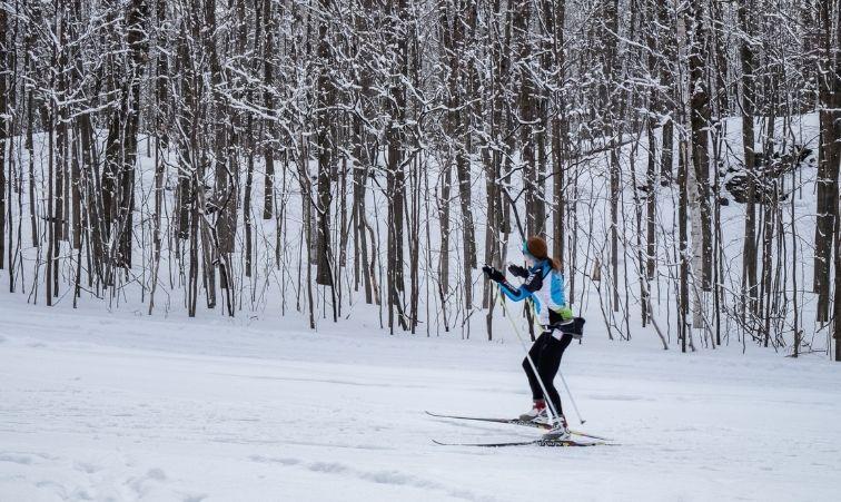 åka längdskidor i stockholm
