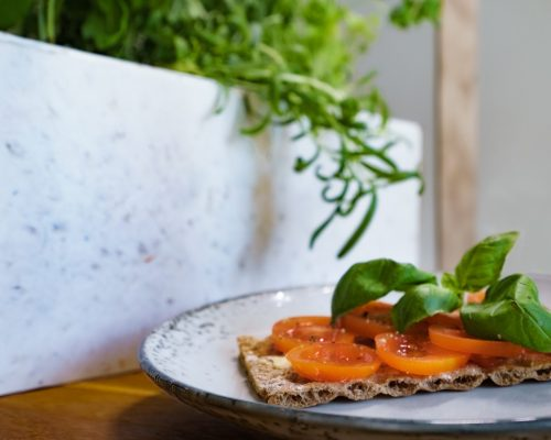 bread with fresh tomatoes and herbs in front of white Kurt