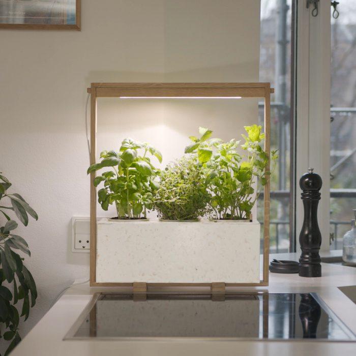 white Kurt in kitchen, providing cosy light and fresh herbs