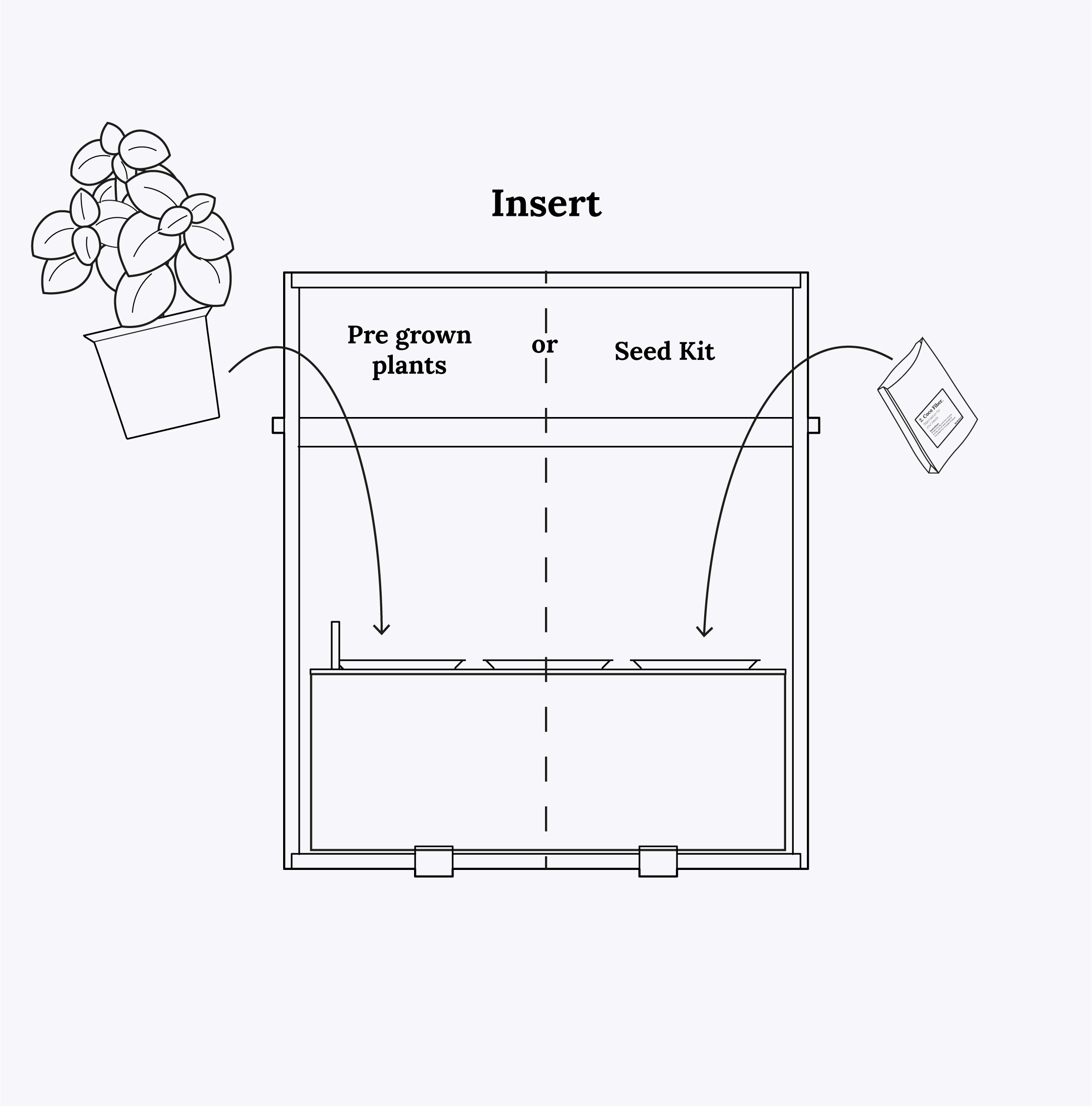 how to insert plants