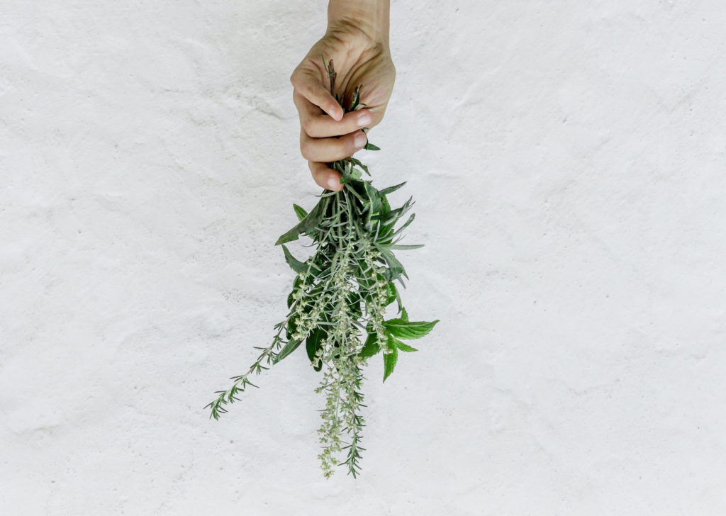 dry your own herbs