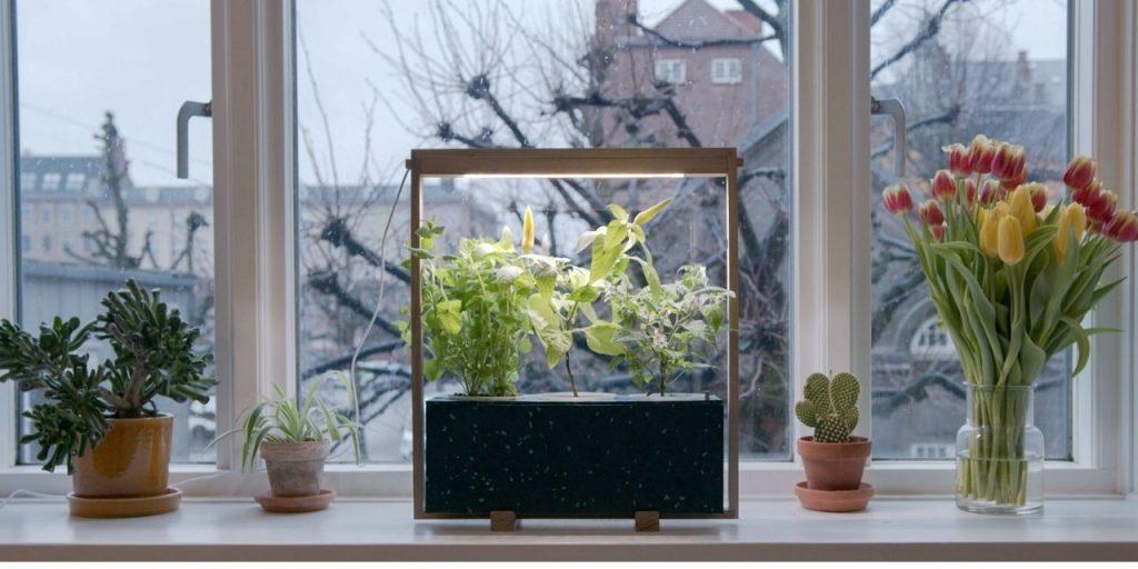 how to brighten up windowsill