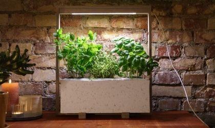 indoor kitchen for herbs